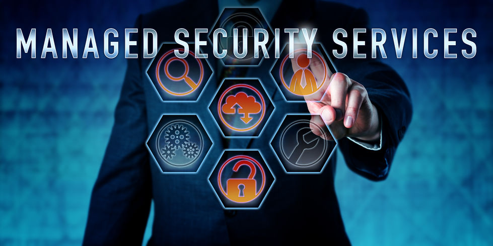 Image result for security services provider