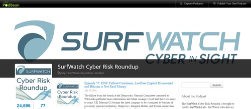 SurfWatch Cyber Risk Roundup
